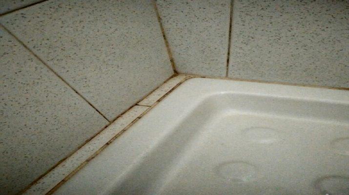 Come eliminare la muffa dalla doccia shoprefer - Muffa bagno candeggina ...